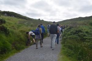 Walk In Diamond Hill, Connemara